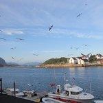 Fisketur ble arrangert hver dag