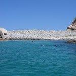 fabuloso snorkel