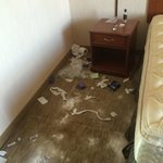 Toilet paper, baby powder and empty sinus medicine packets all over the floor when we arrived.