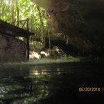 Cenote / Cave