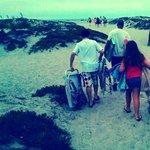 Coronado Beach 2013