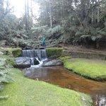 Acredite! O espaço externo inclui uma floresta, um córrego e uma cachoeira.