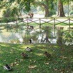 Castello Sforzesco Parkları