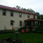 Welcome to The Wandering Pheasant Inn