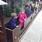having a ride on the mini train at the sheds