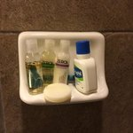 The only place to put toiletries in the shower. Everything kept falling off and I ended up putti