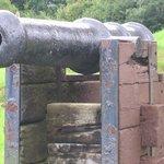 Cannon O'Dea Castle