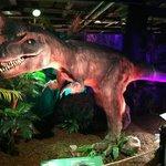 Fuzzy T-Rex