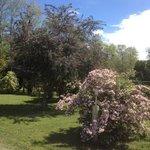Campsite gardens