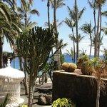 Les jardins, le solarium, la piscine, la plage privée