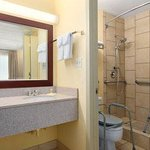 Guest Room Accessible Bathroom