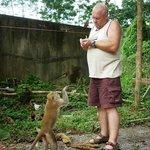 even een aap een bekeuring uit schrijven/met die apenstreken