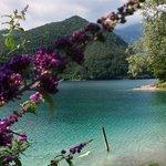 Veduta sul lago di Ledro