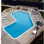 Aerial View of Large Outdoor Heated Swimming Pool