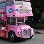 Die hübschen Rundfahrt Busse in Halifax