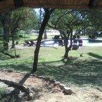 Das Gelände vor dem Chalet mit Pool