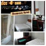 Shamrock hotel room