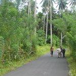 Walking to Tangkoko