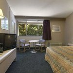 Standard One King Guest Room