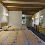 Standard Two Double Guest Room