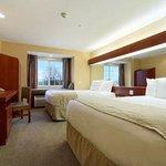 Queen / Double Bed Room