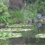 A trip to Giverny booked by the hotel