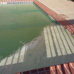 This is what the pool looked like when we stayed and we were told it was cleaned and we could sw