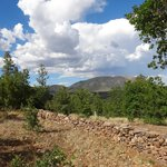 Beautiful views at the Lowell Observatory