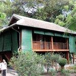 Stilt house of Ho Chi Minh