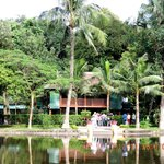 Fish pond in front of Stilt house