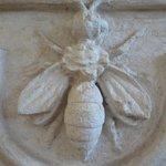 Barberini bee
