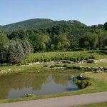 View from Rear Deck at the Banner Elk Winery and Villa