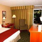 Ramada Guest Room