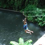 Hang On Grace!! t-barring above jungle pool