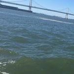 Bay bridge view from duck tour