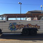 The duck tour buses in sfo