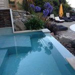 Hydrobath