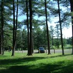 Picnic areas in the woods