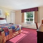 Standard Queen Bed Room