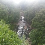 Falls of the Clyde.... a short walk