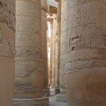 base columnas