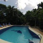 Poolside at Hotel Belvedere