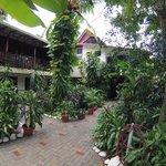 Garden Courtyard at Hotel Belvedere
