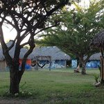 Our spacious grounds provides privacy no matter what the occupancy.  Left behind tree is a priva