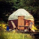 hidden yurt