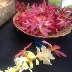 Free Lei Making with a choice of flowers