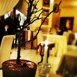 albero delle coccole