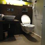 grabrails for toilet