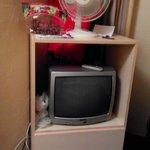 Fan & CRT TV