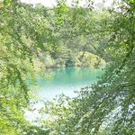 A glimpse through the trees
